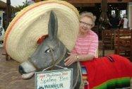 grandma 2010